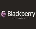 Blackberry Tiles Pvt Ltd (Blackberry)