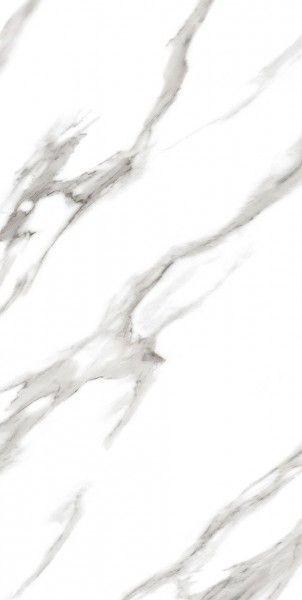 - 600 x 1200 mm (24 x 48 pollici) - ARBESCATO WHITE[1]