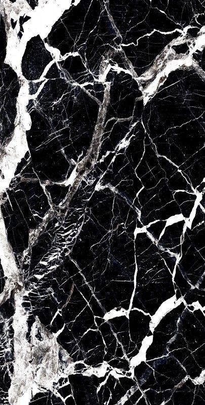 BLOSTER BLACK_03