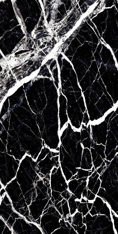 BLOSTER BLACK_04