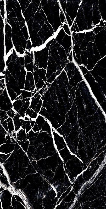 BLOSTER BLACK_05