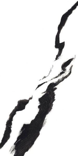 BLACK PANDA_01