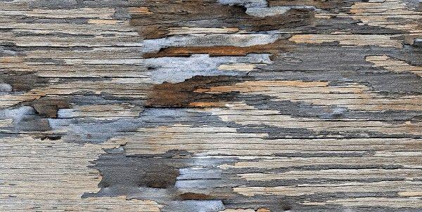 Seramik Yer Karosu - 24 x 48 seramiği - 1238