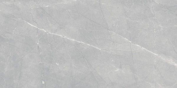 Silk armani Gray