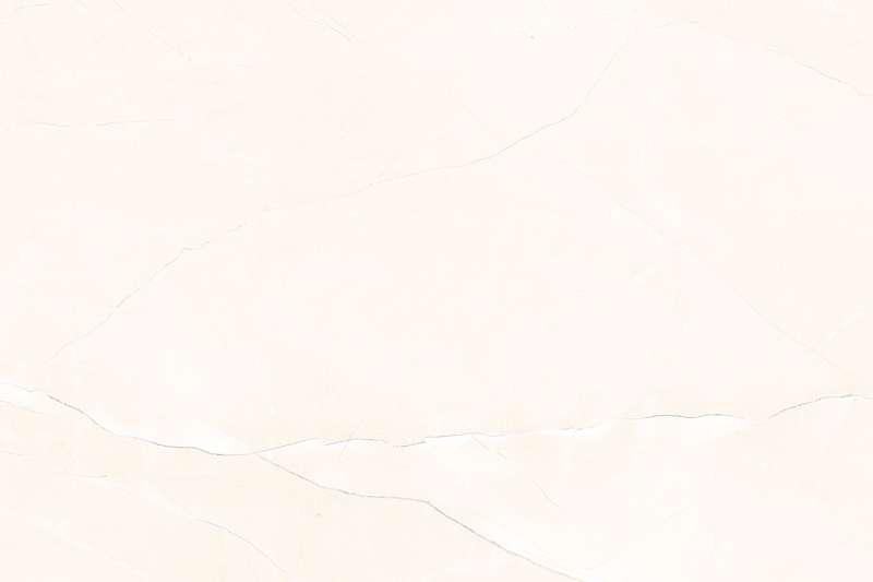 66041_L_{PLAIN}