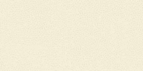- 300 x 600 mm ( 12 x 24 inch ) - 71-Rustic-Ivory