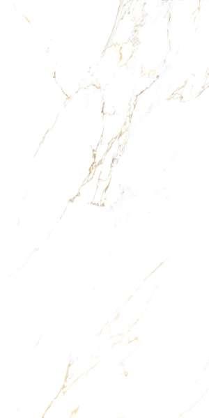 - 600 x 1200 mm (24 x 48 pollici) - GOLDEN-CARRARA_R1