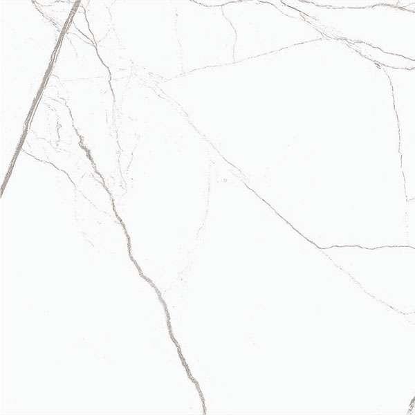 venatino-bianco-1