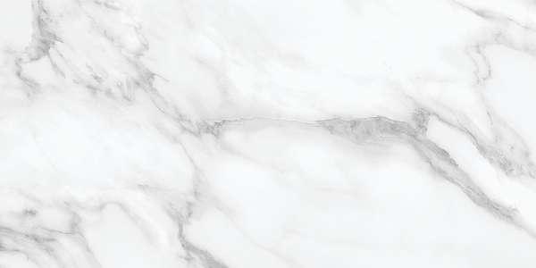 AMBER WHITE-1 (1)