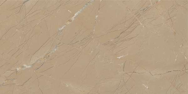 - 600 x 1200 mm ( 24 x 48 inch ) - basalto-brown-1