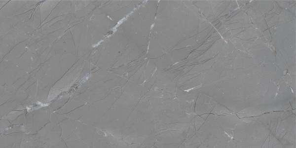 - 600 x 1200 mm (24 x 48 pollici) - basalto-grey-1