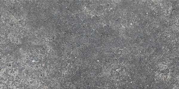 - 600 x 1200 mm ( 24 x 48 inch ) - aurisina-black-(carving)-1