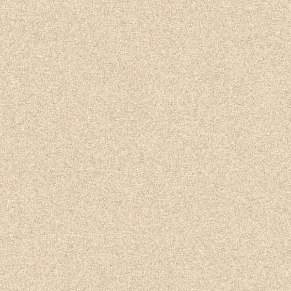 Sandstone  Sahara-6007