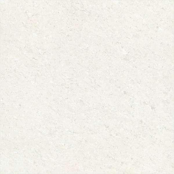 GALAXY WHITE ( L )